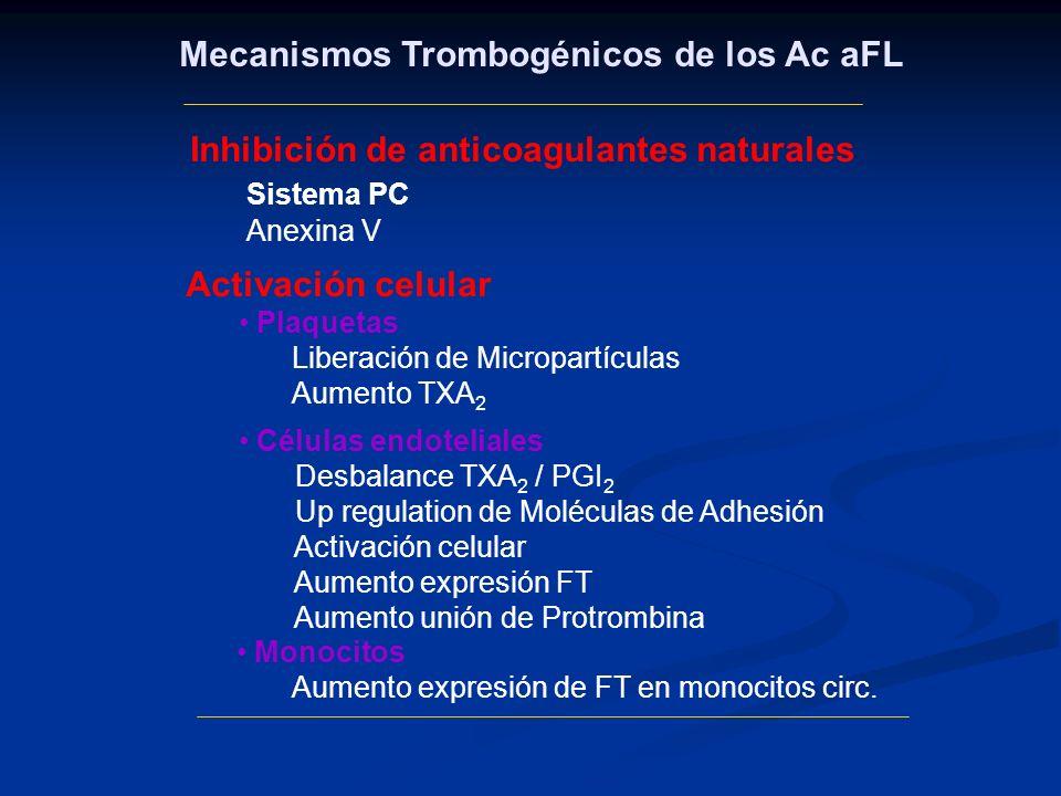 Monocitos Aumento expresión de FT en monocitos circ. Mecanismos Trombogénicos de los Ac aFL Inhibición de anticoagulantes naturales Sistema PC Anexina