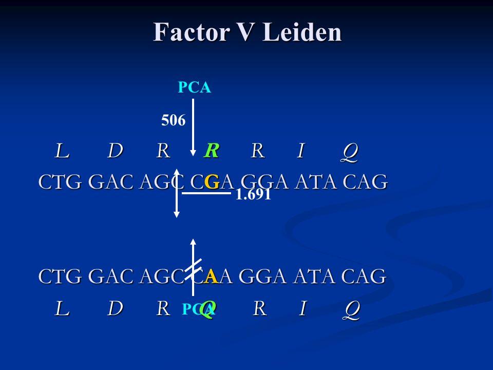 L D R R R I Q L D R R R I Q CTG GAC AGC CGA GGA ATA CAG CTG GAC AGC CAA GGA ATA CAG L D R Q R I Q L D R Q R I Q 1.691 506 PCA Factor V Leiden