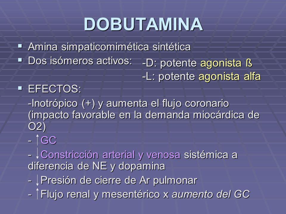 DOBUTAMINA Amina simpaticomimética sintética Amina simpaticomimética sintética Dos isómeros activos: Dos isómeros activos: EFECTOS: EFECTOS: -Inotrópico (+) y aumenta el flujo coronario (impacto favorable en la demanda miocárdica de O2) - GC - Constricción arterial y venosa sistémica a diferencia de NE y dopamina - Presión de cierre de Ar pulmonar - Flujo renal y mesentérico x aumento del GC -D: potente agonista ß -L: potente agonista alfa