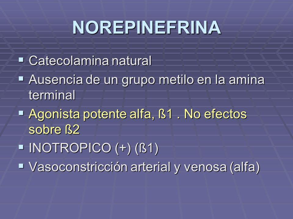 NOREPINEFRINA Catecolamina natural Catecolamina natural Ausencia de un grupo metilo en la amina terminal Ausencia de un grupo metilo en la amina terminal Agonista potente alfa, ß1.