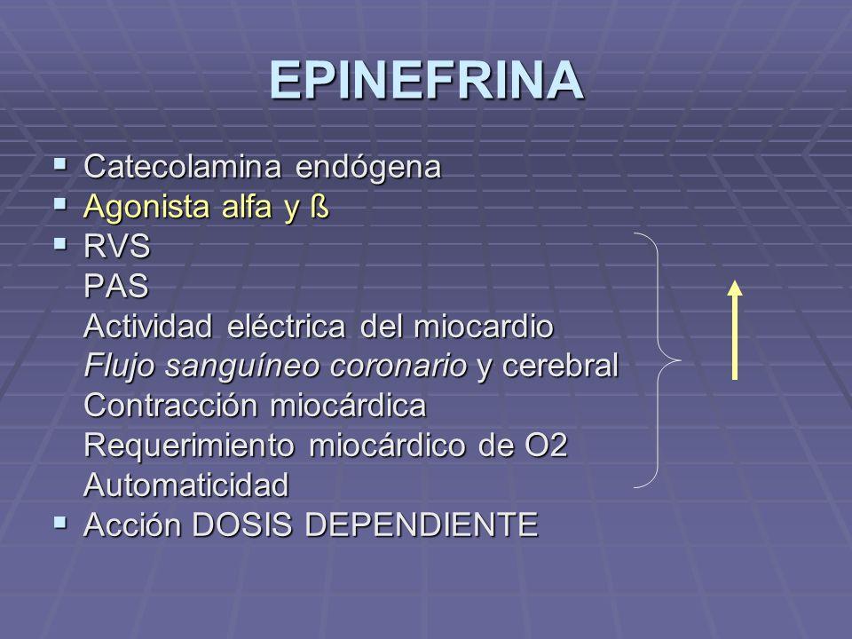 EPINEFRINA Catecolamina endógena Catecolamina endógena Agonista alfa y ß Agonista alfa y ß RVS RVSPAS Actividad eléctrica del miocardio Flujo sanguíneo coronario y cerebral Contracción miocárdica Requerimiento miocárdico de O2 Automaticidad Acción DOSIS DEPENDIENTE Acción DOSIS DEPENDIENTE