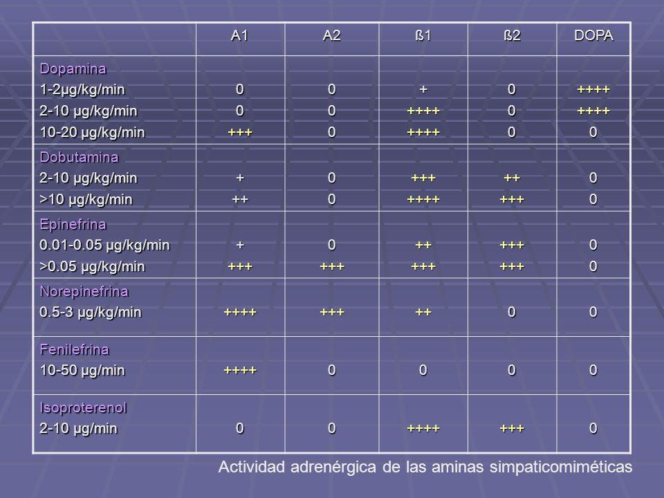 A1A2 ß1ß1ß1ß1ß2DOPA Dopamina 1-2µg/kg/min 2-10 µg/kg/min 10-20 µg/kg/min 00+++000+++++++++000++++++++0 Dobutamina 2-10 µg/kg/min >10 µg/kg/min +++00++++++++++++00 Epinefrina 0.01-0.05 µg/kg/min >0.05 µg/kg/min ++++0++++++++++++++00 Norepinefrina 0.5-3 µg/kg/min +++++++++00 Fenilefrina 10-50 µg/min ++++0000 Isoproterenol 2-10 µg/min 00+++++++0 Actividad adrenérgica de las aminas simpaticomiméticas