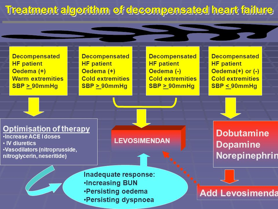 Treatment algorithm of decompensated heart failure Decompensated HF patient Oedema (+) Warm extremities SBP > 90mmHg Decompensated HF patient Oedema (