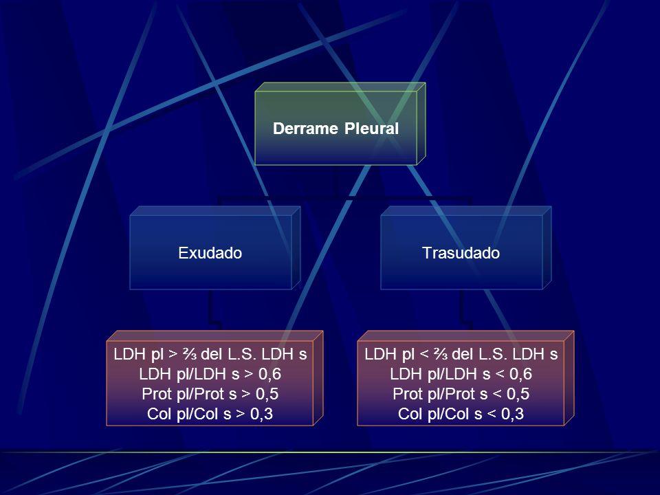 Derrame Pleural Exudado LDH pl > del L.S. LDH s LDH pl/LDH s > 0,6 Prot pl/Prot s > 0,5 Col pl/Col s > 0,3 Trasudado LDH pl < del L.S. LDH s LDH pl/LD