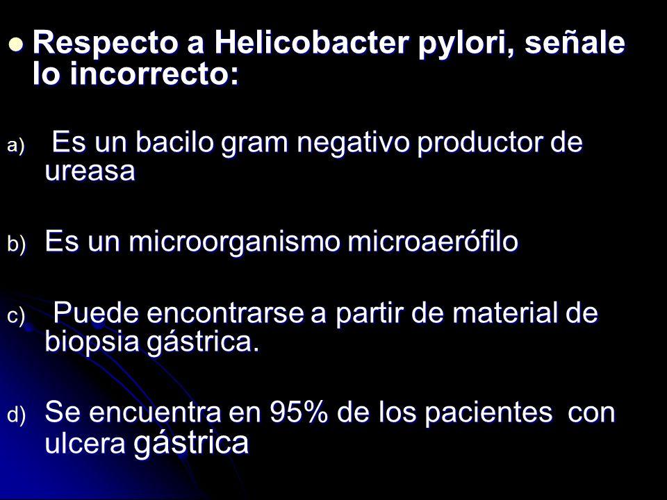 Erradicación de H. pylori Esquema triple: Esquema triple: Omeprazol 20 mg (dos veces/día) Omeprazol 20 mg (dos veces/día) Más 2: amoxicilina, 1g; clar