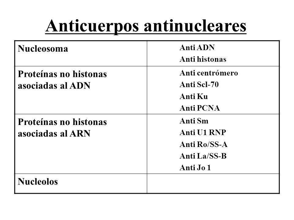 Nucleosoma Anti ADN Anti histonas Proteínas no histonas asociadas al ADN Anti centrómero Anti Scl-70 Anti Ku Anti PCNA Proteínas no histonas asociadas