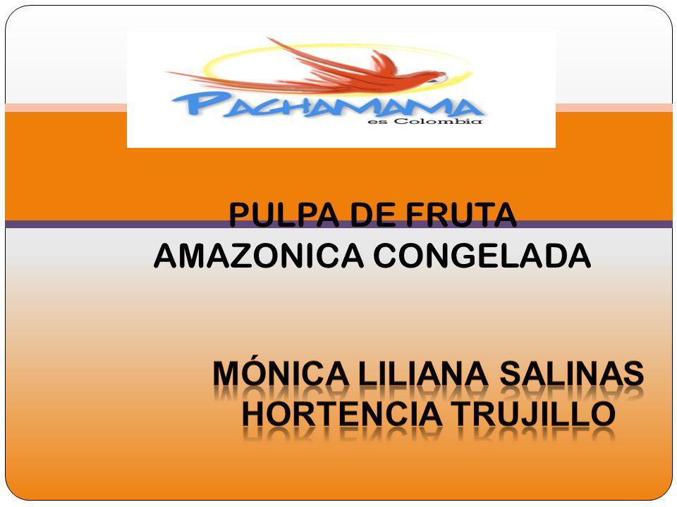 PULPA DE FRUTA AMAZONICA CONGELADA