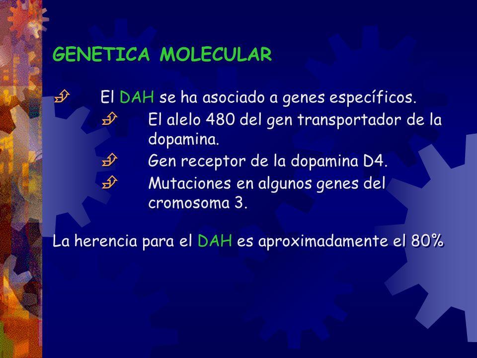GENETICA MOLECULAR El DAH se ha asociado a genes específicos. El alelo 480 del gen transportador de la dopamina. Gen receptor de la dopamina D4. Mutac