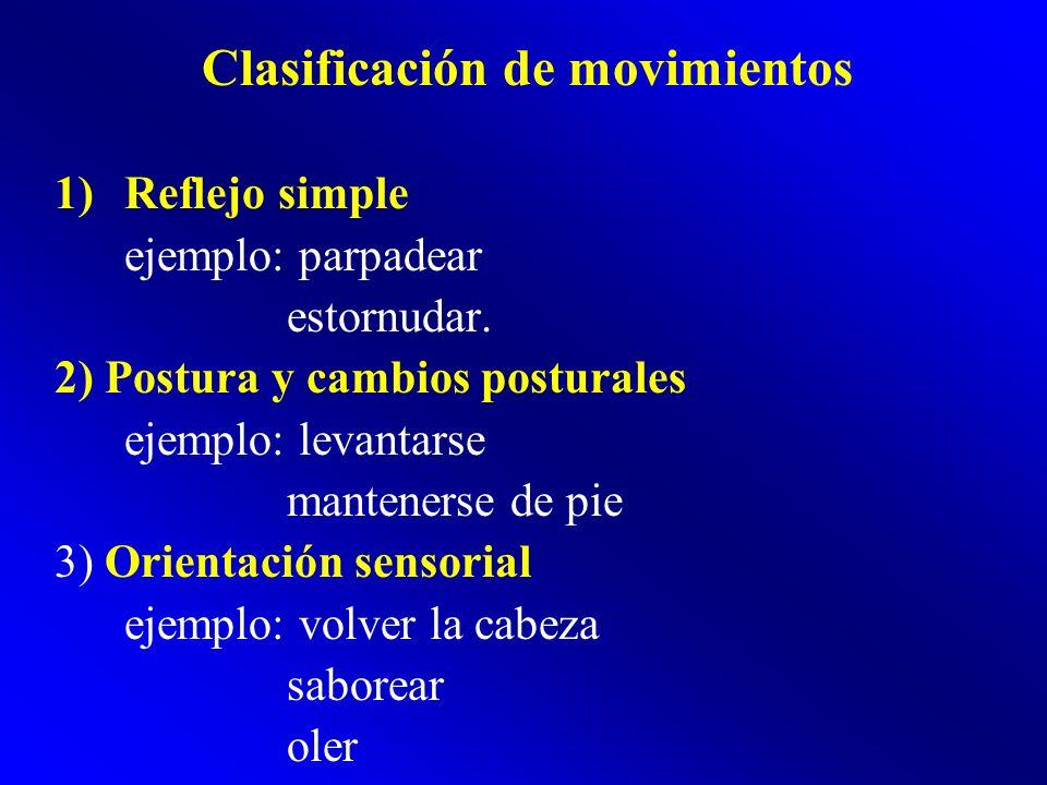 Clasificación de movimientos 1)Reflejo simple ejemplo: parpadear estornudar. 2) Postura y cambios posturales ejemplo: levantarse mantenerse de pie 3)