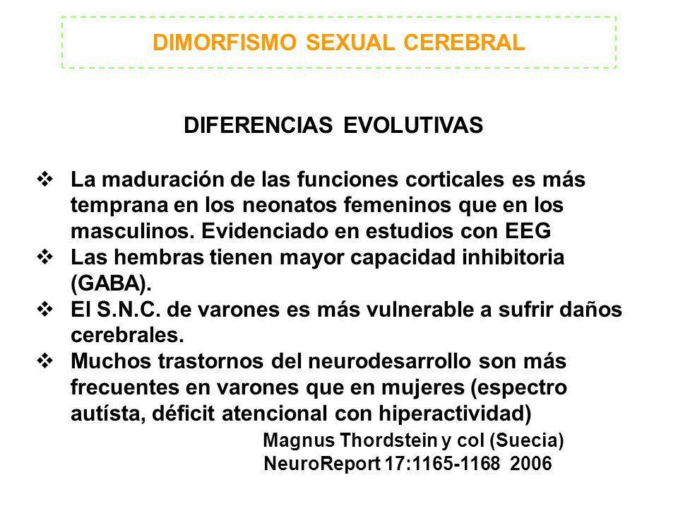 DIMORFISMO SEXUAL CEREBRAL DIFERENCIAS EVOLUTIVAS La maduración de las funciones corticales es más temprana en los neonatos femeninos que en los mascu