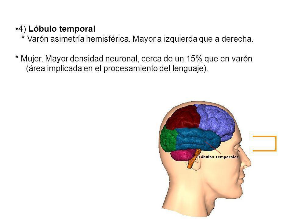 4) Lóbulo temporal * Varón asimetría hemisférica. Mayor a izquierda que a derecha. * Mujer. Mayor densidad neuronal, cerca de un 15% que en varón (áre