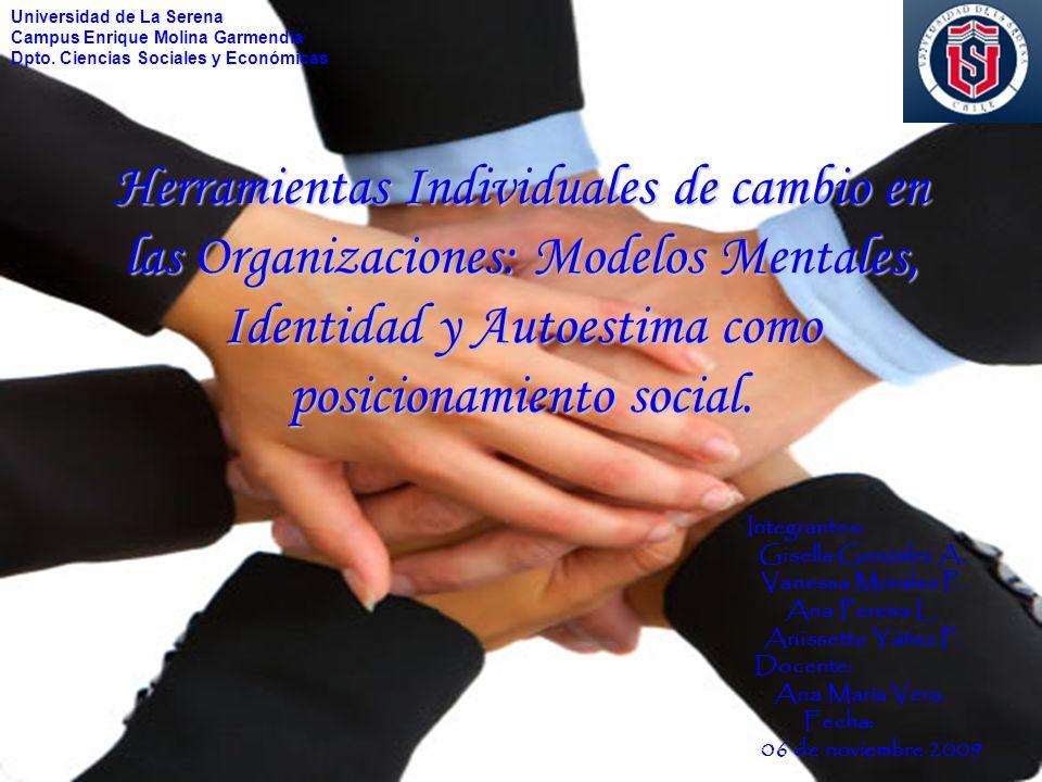 Herramientas Individuales de cambio en las Organizaciones: Modelos Mentales, Identidad y Autoestima como posicionamiento social. Integrantes: Gisella