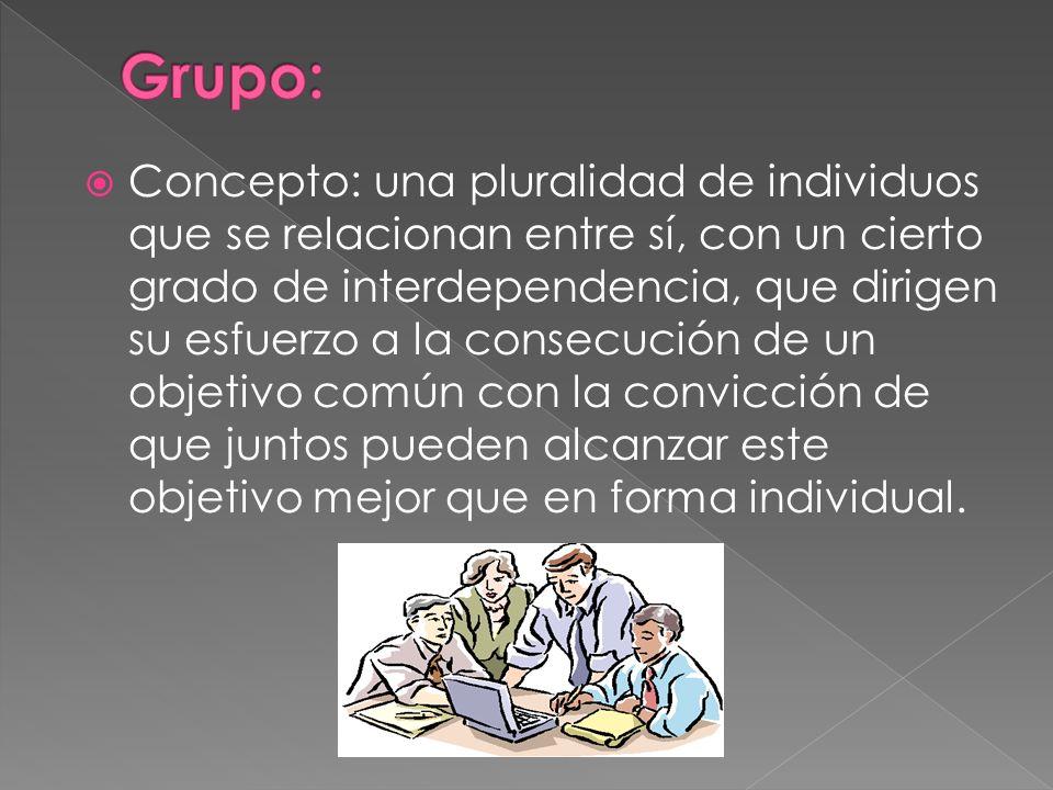 Concepto: una pluralidad de individuos que se relacionan entre sí, con un cierto grado de interdependencia, que dirigen su esfuerzo a la consecución d