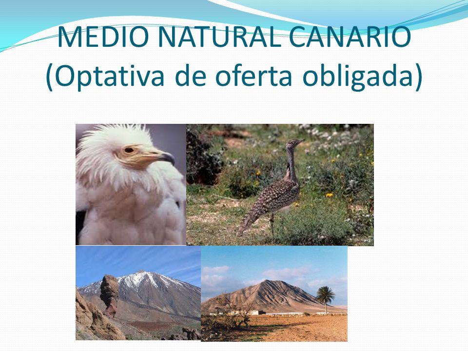 MEDIO NATURAL CANARIO (Optativa de oferta obligada)