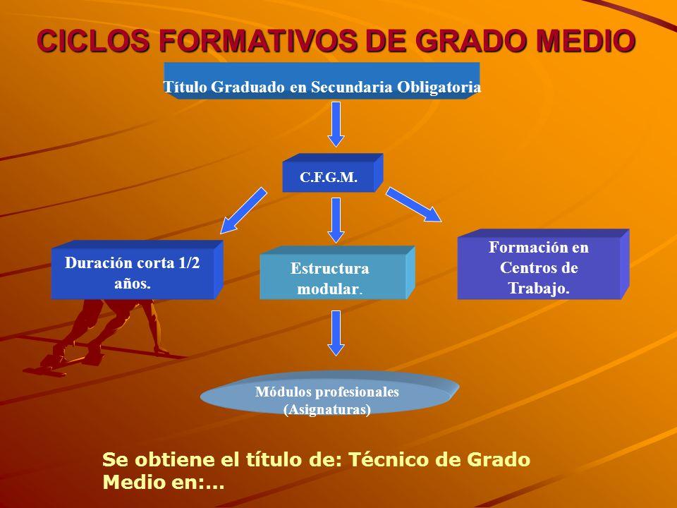 PROGRAMASDE CUALIFICACIÓN PROFESIONAL INICIAL EN FUERTEVENTURA -PCP: Operac. auxiliares de montaje de instalac. electrotécnicas y de telecom en edific