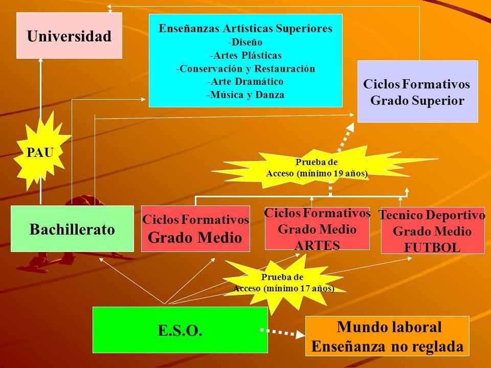 Universidad Enseñanzas Artísticas Superiores -Diseño -Artes Plásticas -Conservación y Restauración -Arte Dramático -Música y Danza Bachillerato Ciclos Formativos Grado Medio E.S.O.