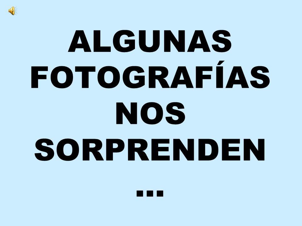 ALGUNAS FOTOGRAFÍAS NOS SORPRENDEN …