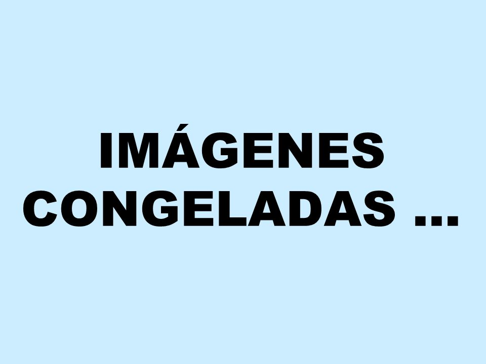IMÁGENES CONGELADAS …