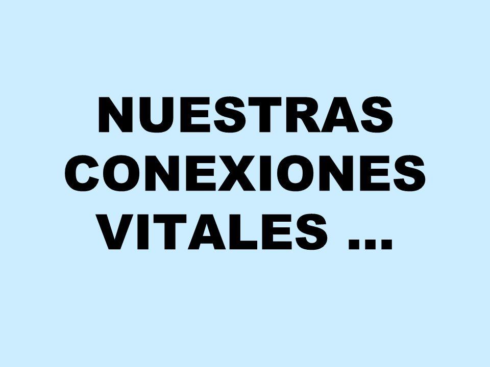NUESTRAS CONEXIONES VITALES …