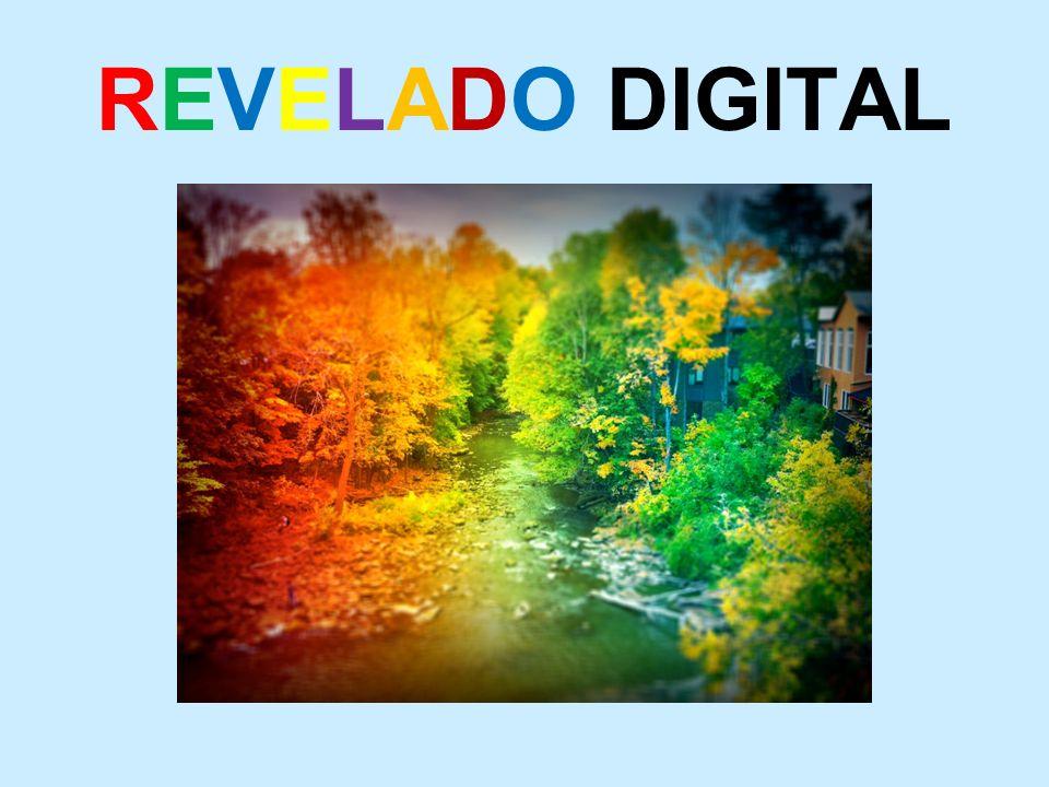 REVELADO DIGITAL
