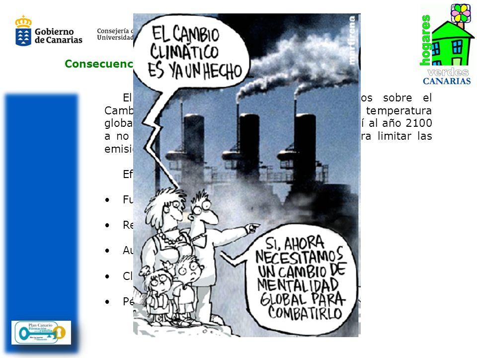 El Grupo Intergubernamental de Expertos sobre el Cambio Climático, IPCC (ONU), calcula que la temperatura global media aumentará entre 1,8 y 4°C de aq