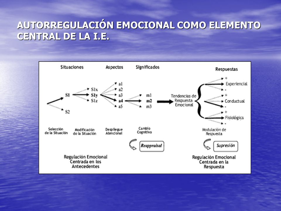 AUTORREGULACIÓN EMOCIONAL COMO ELEMENTO CENTRAL DE LA I.E.