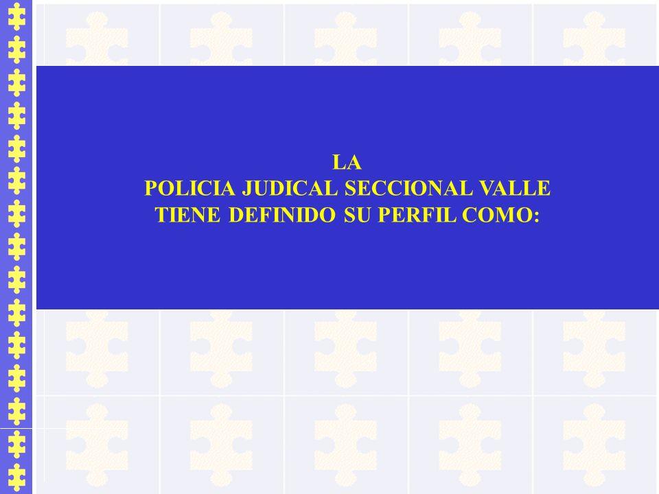 LA POLICIA JUDICAL SECCIONAL VALLE TIENE DEFINIDO SU PERFIL COMO: