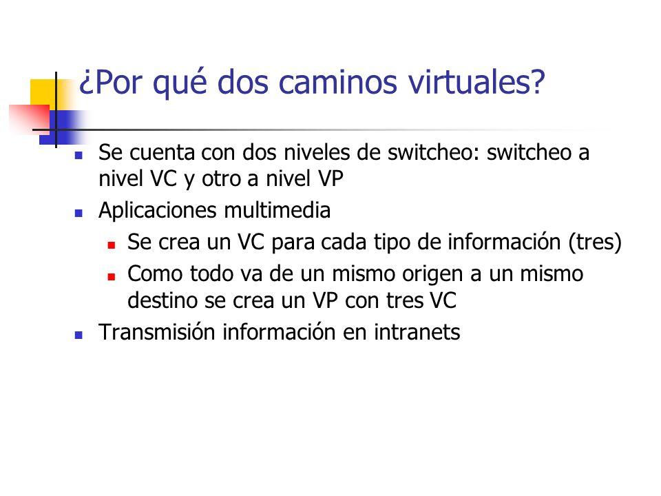 ¿Por qué dos caminos virtuales? Se cuenta con dos niveles de switcheo: switcheo a nivel VC y otro a nivel VP Aplicaciones multimedia Se crea un VC par