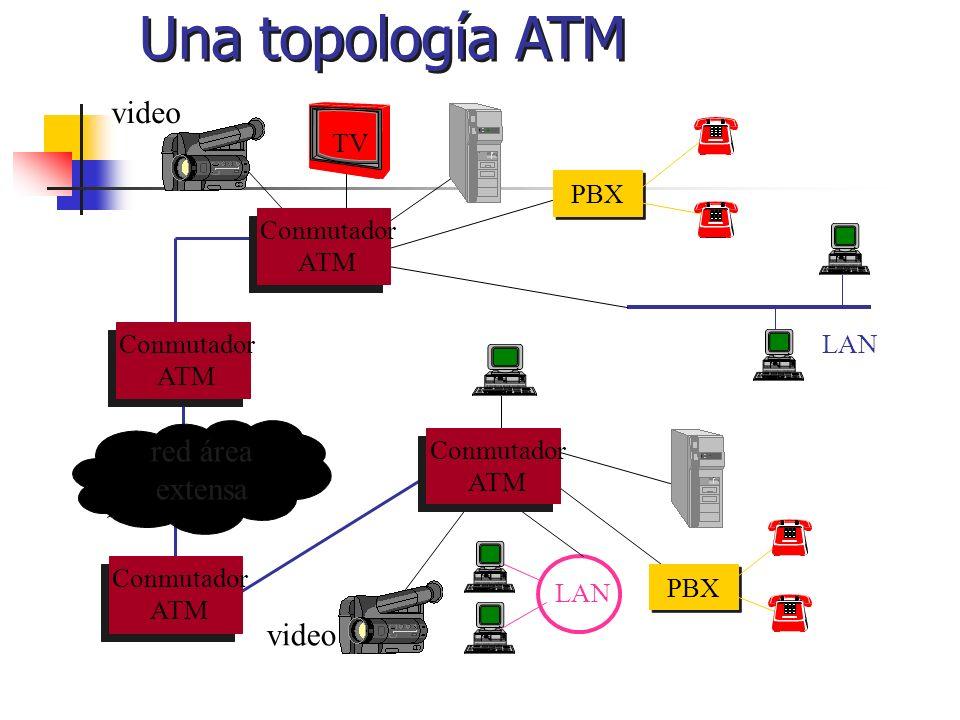 Una topología ATM LAN Conmutador ATM red área extensa Conmutador ATM Conmutador ATM PBX Conmutador ATM TV PBX LAN video