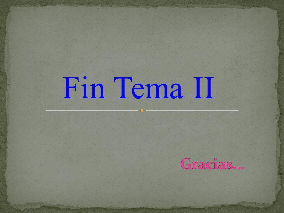 Fin Tema II