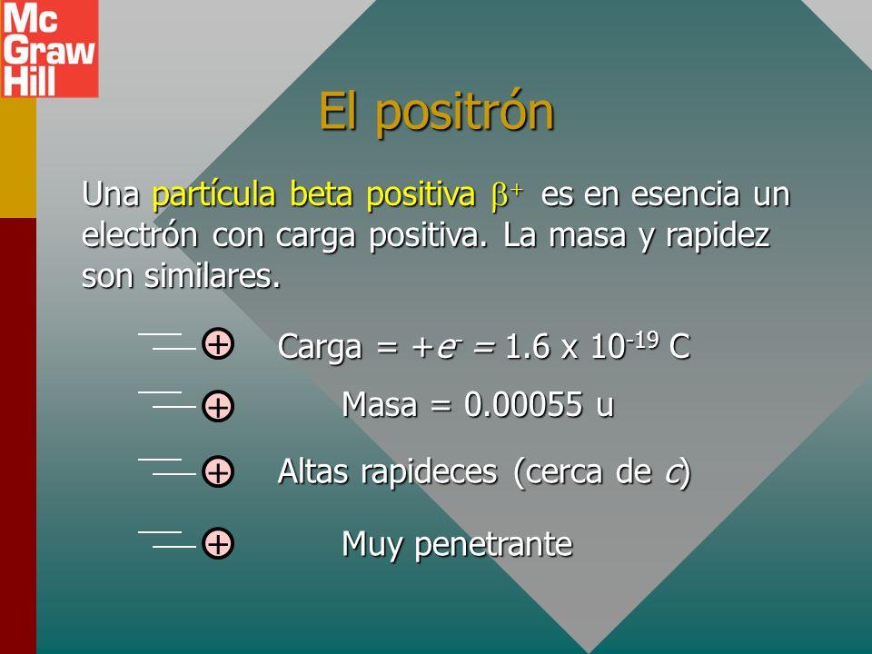 La partícula beta menos Una partícula beta menos es simplemente un electrón que se expulsó del núcleo. Carga = e - = -1.6 x 10 -19 C - Altas rapideces