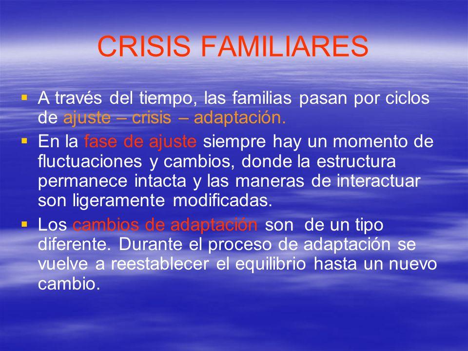 CRISIS FAMILIARES Un buen nivel de ajuste familiar se refleja en: Una adecuada salud física y mental de los individuos.