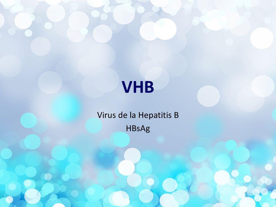 VHB Virus de la Hepatitis B HBsAg