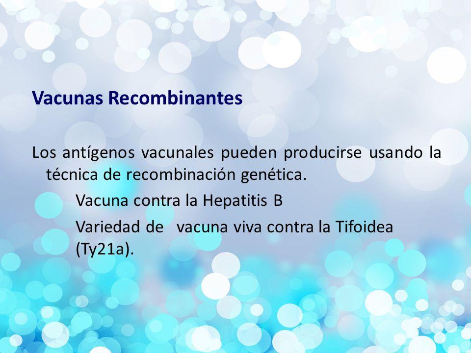 Vacunas Recombinantes Los antígenos vacunales pueden producirse usando la técnica de recombinación genética.
