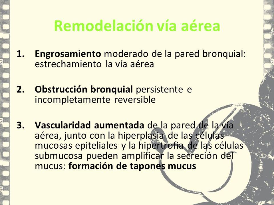 1.Engrosamiento moderado de la pared bronquial: estrechamiento la vía aérea 2.Obstrucción bronquial persistente e incompletamente reversible 3.Vascula