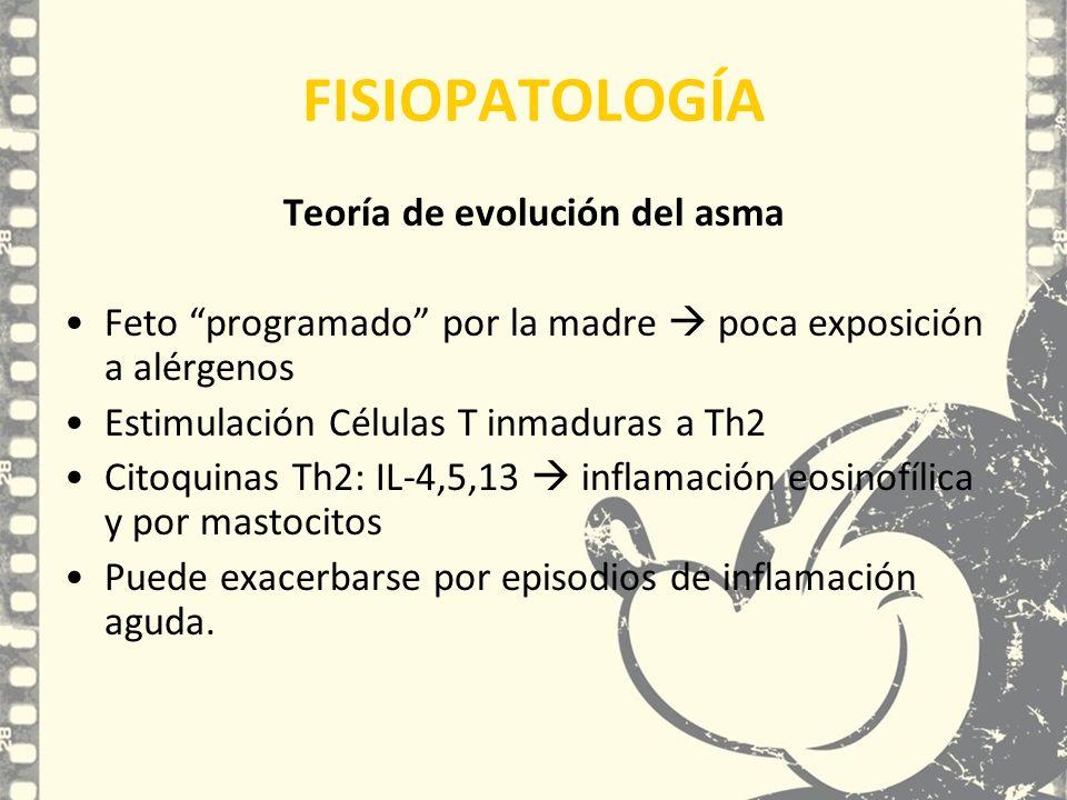 Teoría de evolución del asma Feto programado por la madre poca exposición a alérgenos Estimulación Células T inmaduras a Th2 Citoquinas Th2: IL-4,5,13