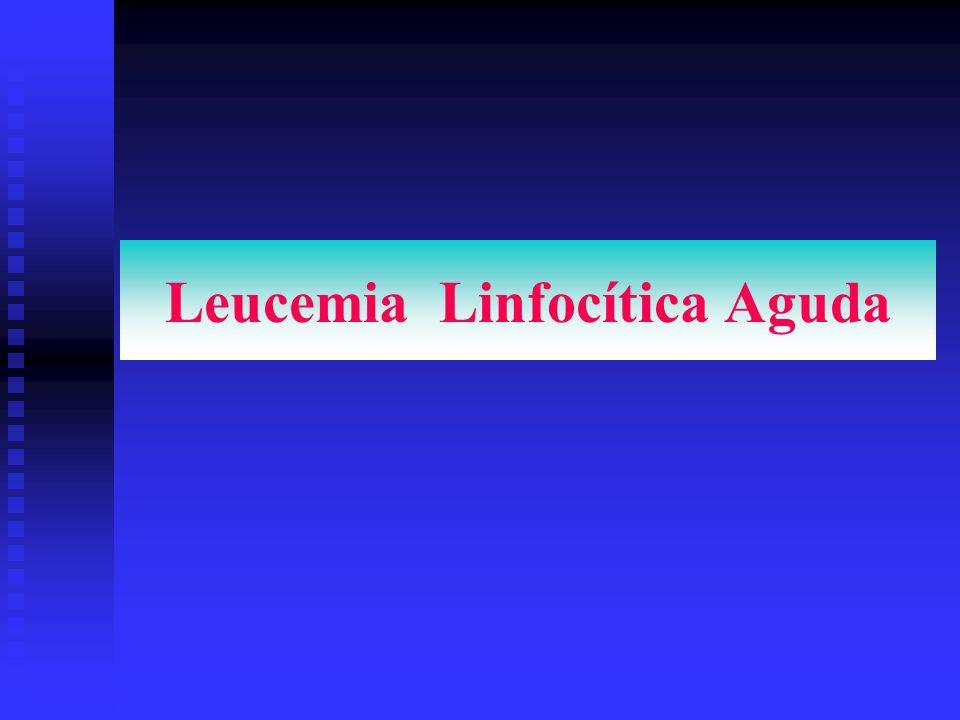 Leucemia Linfocítica Aguda
