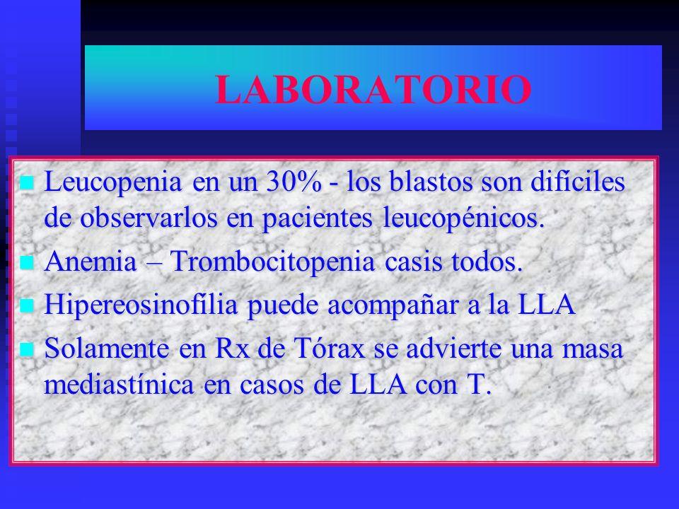 LABORATORIO Leucopenia en un 30% - los blastos son difíciles de observarlos en pacientes leucopénicos. Leucopenia en un 30% - los blastos son difícile