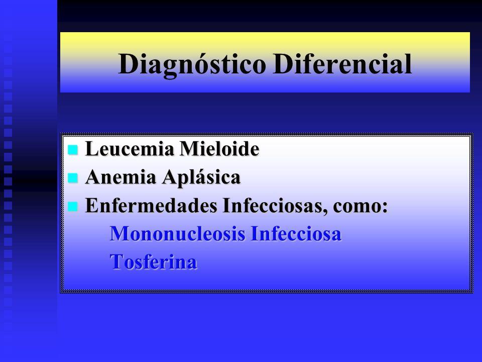 Diagnóstico Diferencial Leucemia Mieloide Leucemia Mieloide Anemia Aplásica Anemia Aplásica Enfermedades Infecciosas, como: Enfermedades Infecciosas,