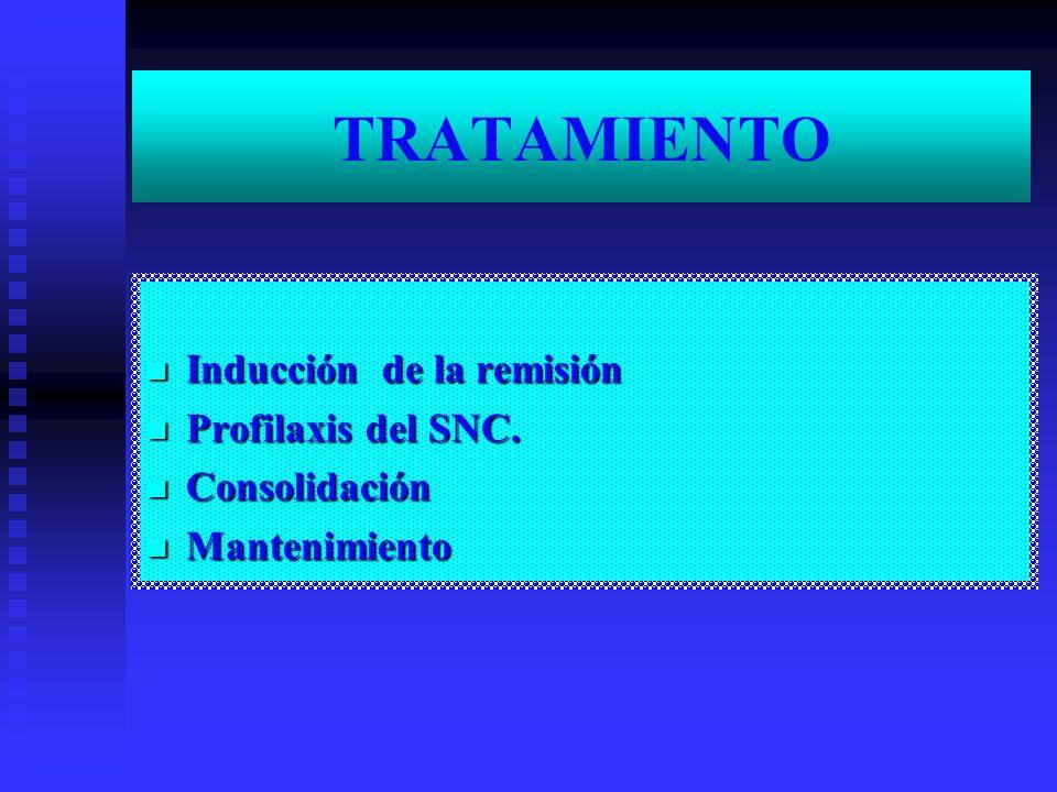 TRATAMIENTO Inducción de la remisión Inducción de la remisión Profilaxis del SNC. Profilaxis del SNC. Consolidación Consolidación Mantenimiento Manten