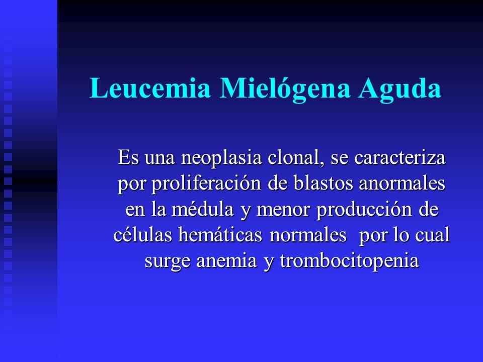 Leucemia Mielógena Aguda Es una neoplasia clonal, se caracteriza por proliferación de blastos anormales en la médula y menor producción de células hem