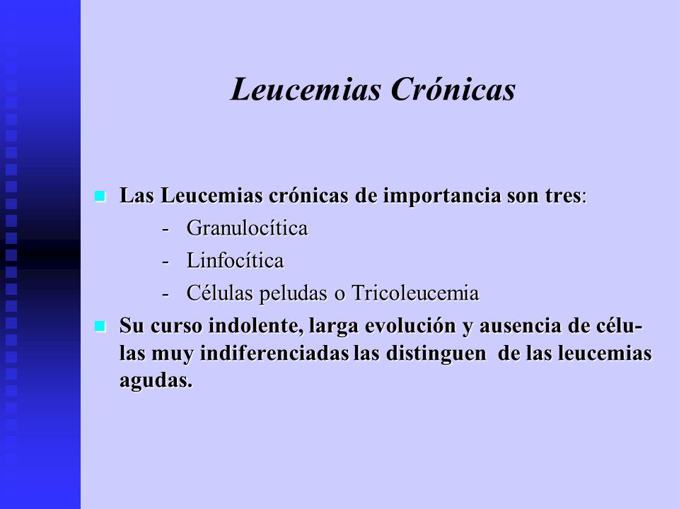 Leucemias Crónicas Las Leucemias crónicas de importancia son tres: Las Leucemias crónicas de importancia son tres: - Granulocítica - Linfocítica - Cél