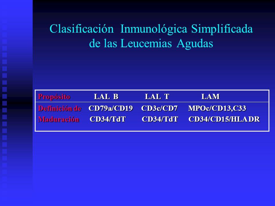 Clasificación Inmunológica Simplificada de las Leucemias Agudas Propósito LAL B LAL T LAM Definición de CD79a/CD19 CD3c/CD7 MPOc/CD13,C33 Maduración C