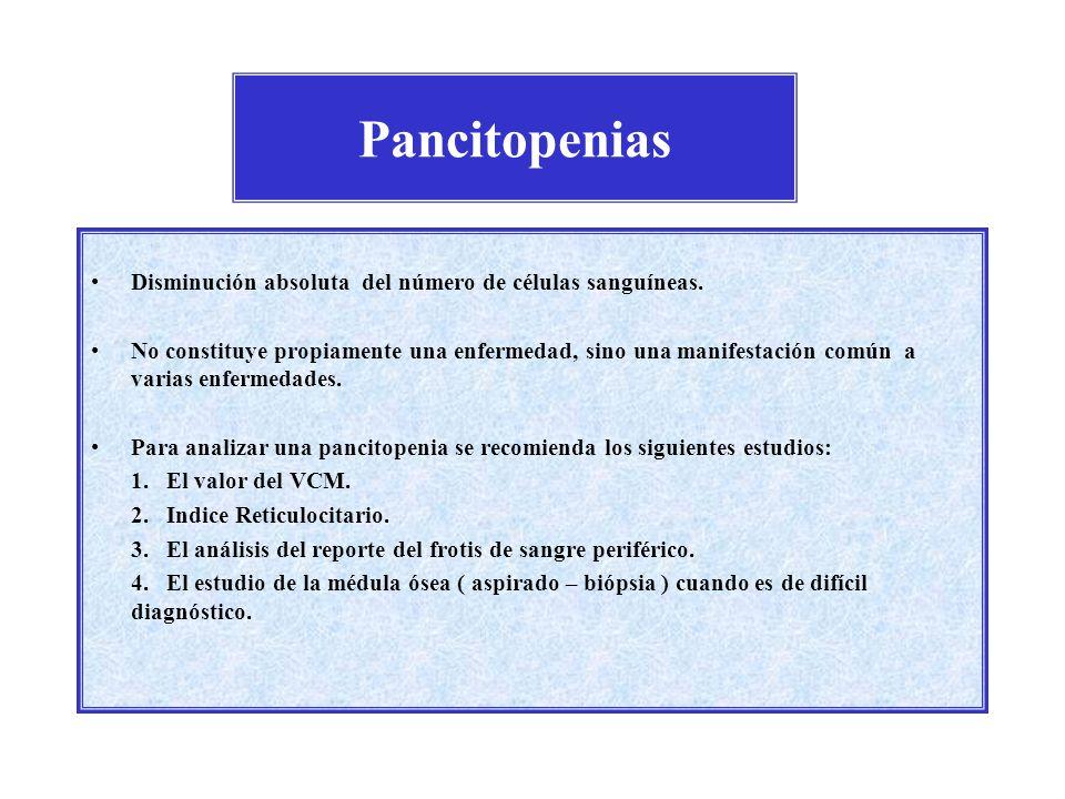 Pancitopenias Disminución absoluta del número de células sanguíneas. No constituye propiamente una enfermedad, sino una manifestación común a varias e