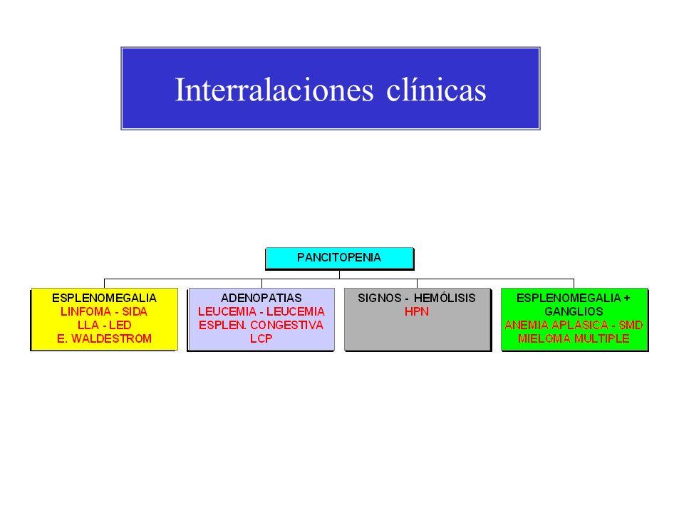 Pancitopenias