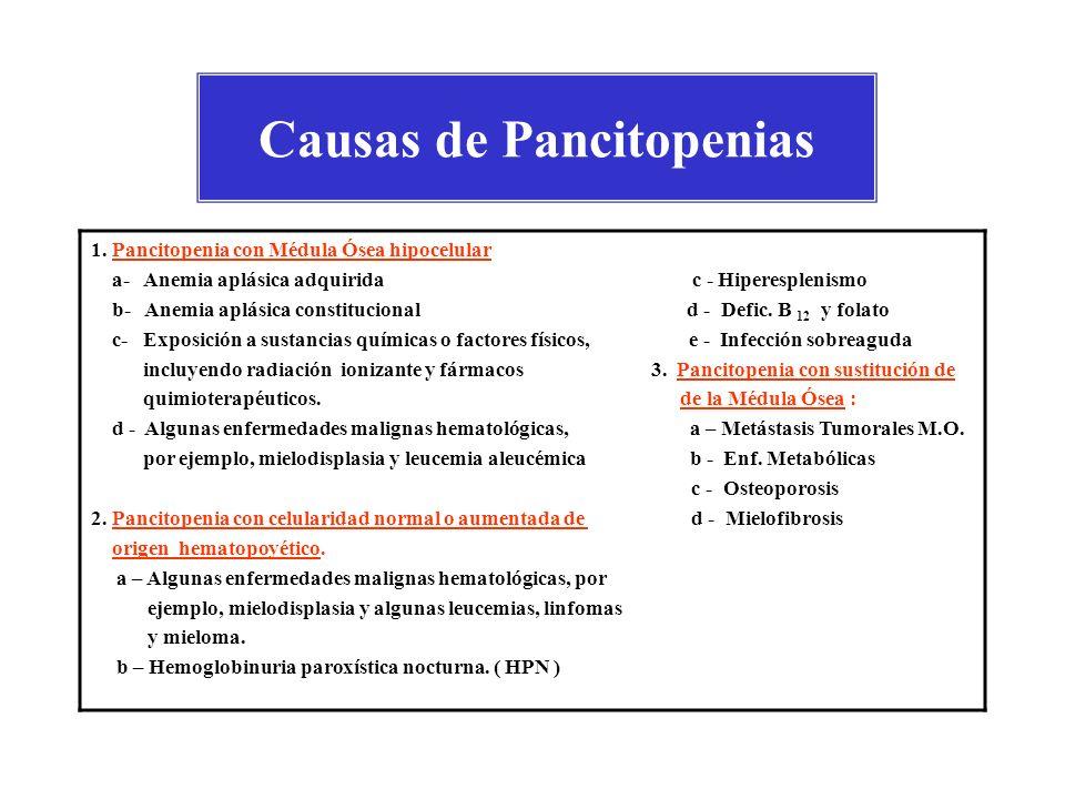 Causas más frecuentes de Pancitopenia ANEMIA APLÁSTICA : es un fracaso de la médula ósea originado por una serie de causas y caracterizado por la destrucción o supresión de las células madres, con la consiguientes pancitopenia.