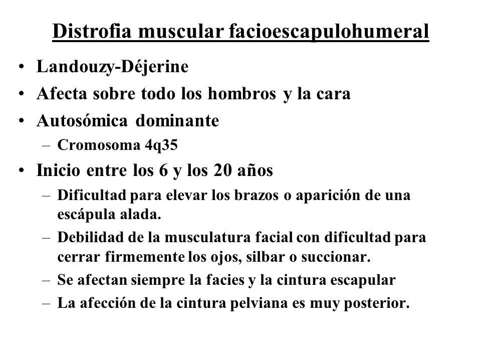 Landouzy-Déjerine Afecta sobre todo los hombros y la cara Autosómica dominante –Cromosoma 4q35 Inicio entre los 6 y los 20 años –Dificultad para eleva