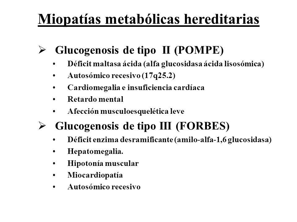 Glucogenosis de tipo II (POMPE) Déficit maltasa ácida (alfa glucosidasa ácida lisosómica) Autosómico recesivo (17q25.2) Cardiomegalia e insuficiencia