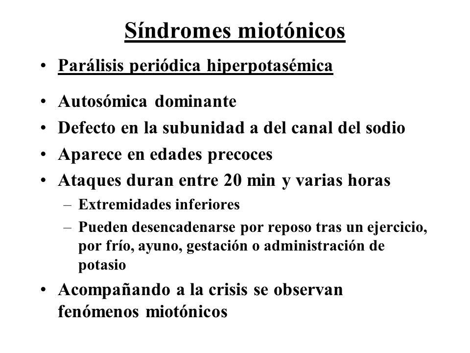 Síndromes miotónicos Parálisis periódica hiperpotasémica Autosómica dominante Defecto en la subunidad a del canal del sodio Aparece en edades precoces