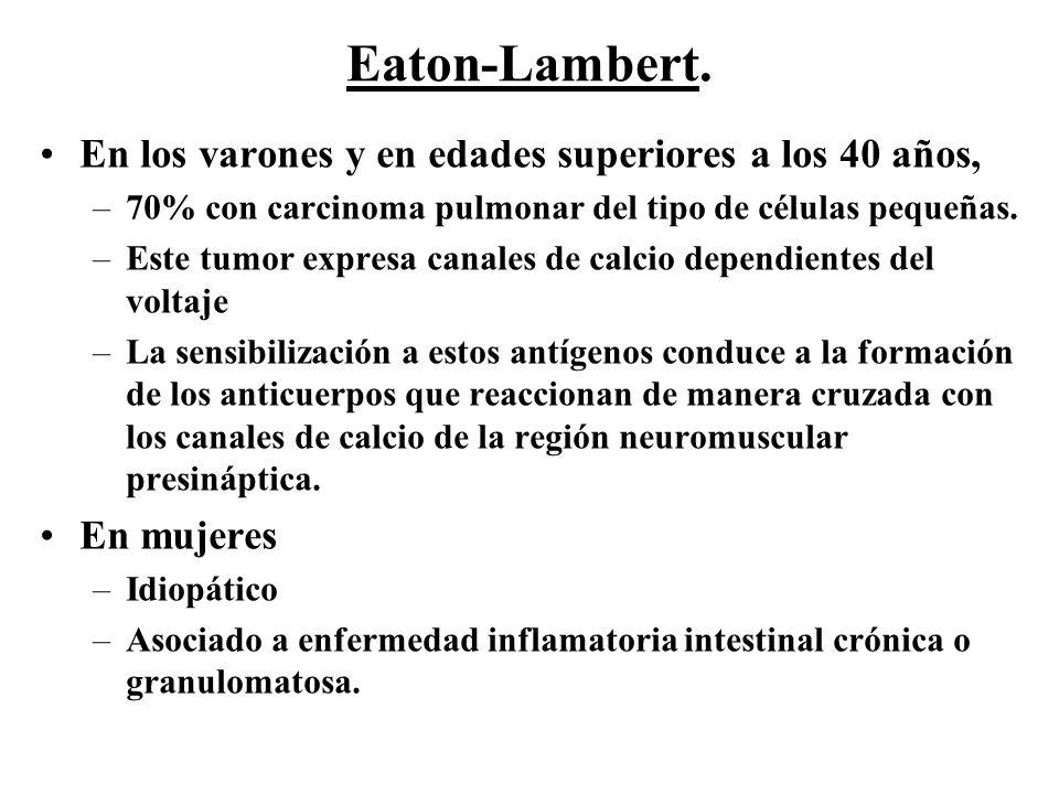 En los varones y en edades superiores a los 40 años, –70% con carcinoma pulmonar del tipo de células pequeñas. –Este tumor expresa canales de calcio d